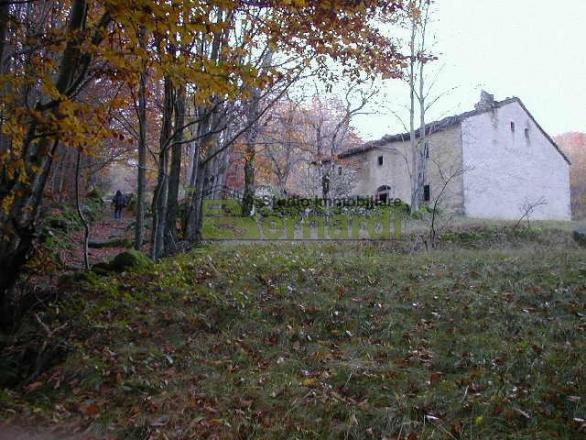 RU441 - Borgo rustico a Ospitale