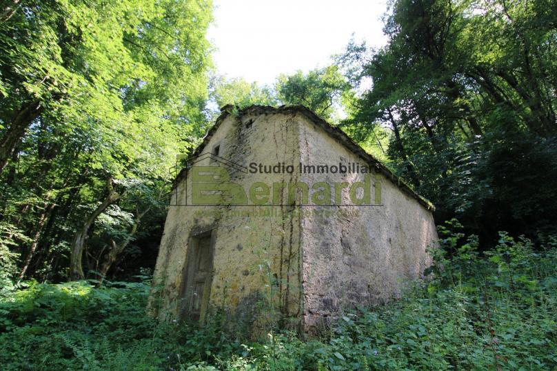 RU499 - Piccolo rustico immerso nel bosco